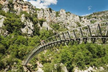 Bridge over the Verdon canyon