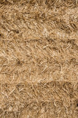 Pile of straw texture