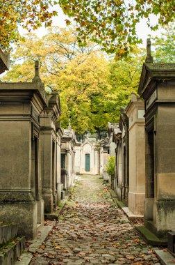Cobblestone road in the cemetery
