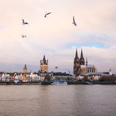 Kölnpanorama und Rhein
