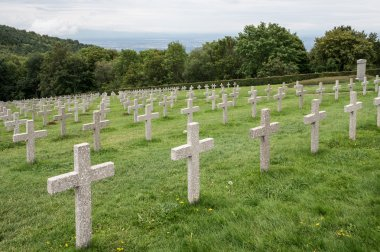 Military graveyard of heroes of the First World War - France, Alsace, Vosges. Rows of tombstones. stock vector