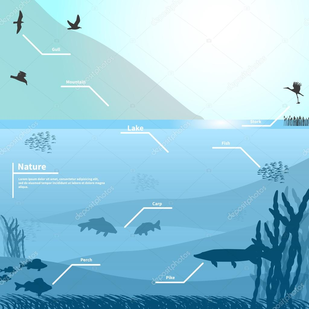 Vector illustration of nature on a blue background