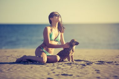 Young woman playing with dog pet on beach during sunrise or sunset.Girl and dog having fun on seaside