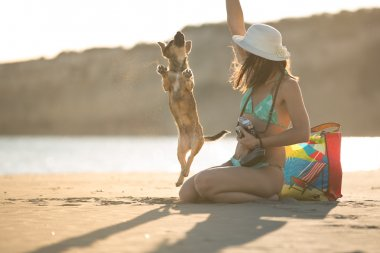 Young woman playing with dog pet on beach during sunrise or sunset.Hipster girl and dog having fun on seaside.Cute neglected stay dog adopted by caring young woman