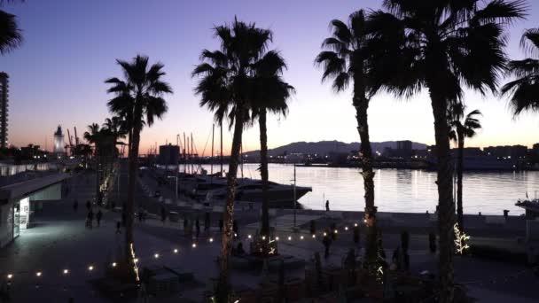 Port Malaga by night