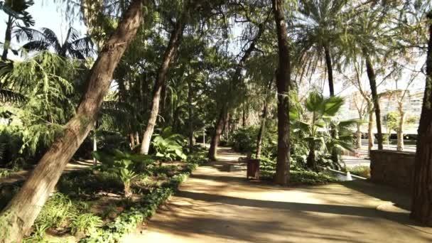 Malaga Palm tree gardens