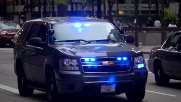 Undercover Police car - CHICAGO, ILLINOIS/USA — Stock Video © 4kclips #102394374