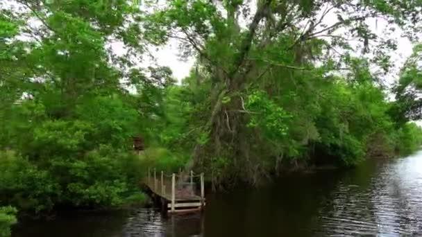 Boat tour through the swamp