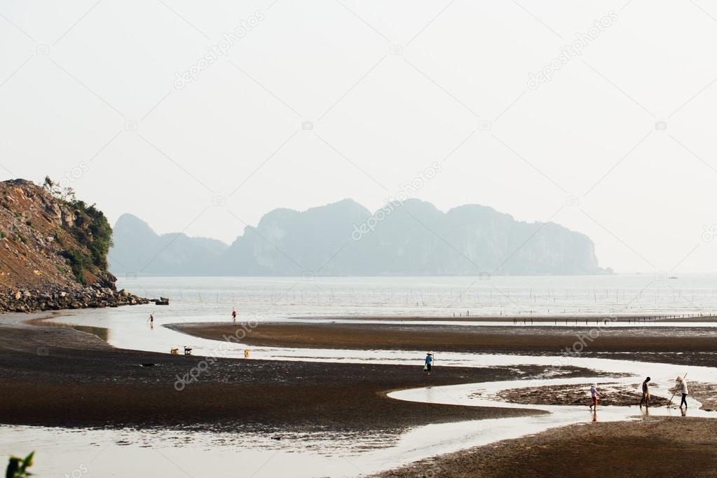 Asian Fishermen hunting for fish in the shallows