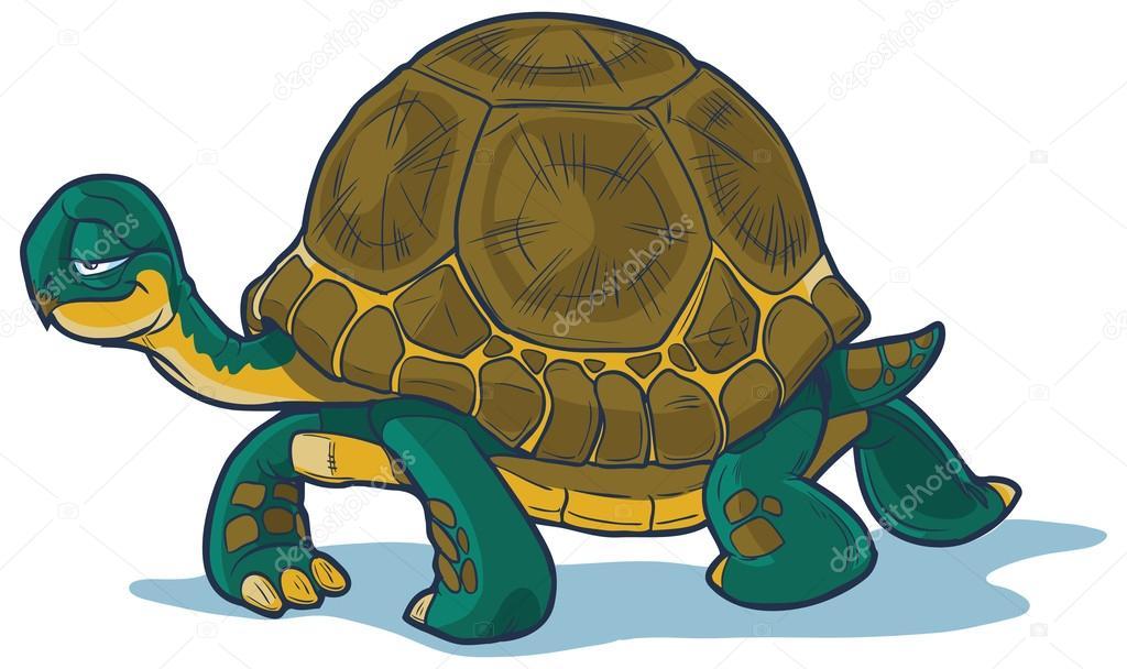Tortuga De Galapagos Animada