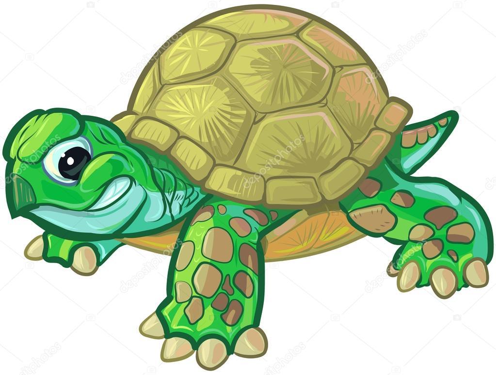 Clipart Cute Baby Turtle Cute Tough Cartoon Baby Turtle Or