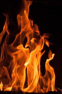 Fire flames on a black background. Blaze fire flame texture back
