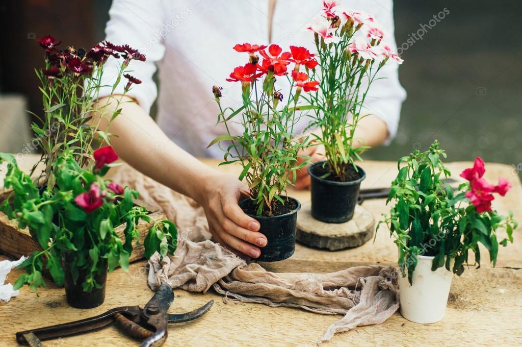 Haciendo trabajo de jardiner a en una r stica mesa de for Trabajo jardinero