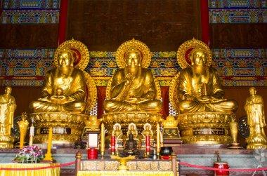 Buddha statue, chinese temple ,thailand