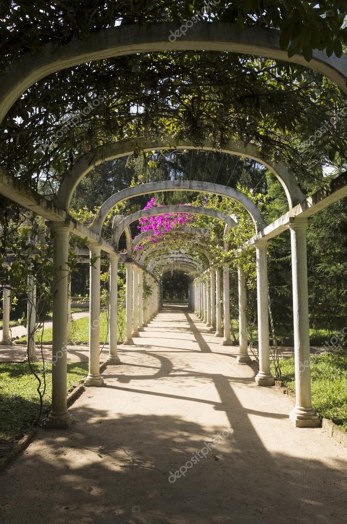 Ad arco percorso pergolato in giardino botanico rio de for Arco decorativo giardino