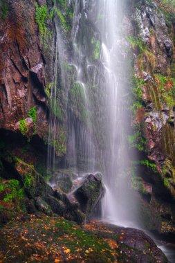 Autumn view of the Augacaida waterfall