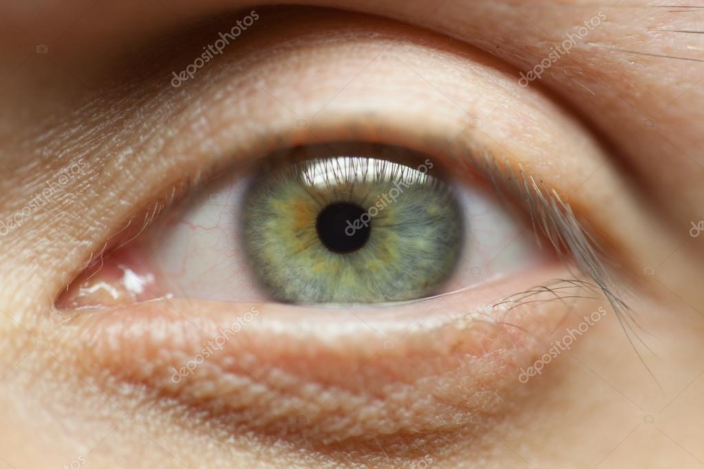 Fotos Ojos Verdes De Hombres Hombres De Ojos Verdes Close Up