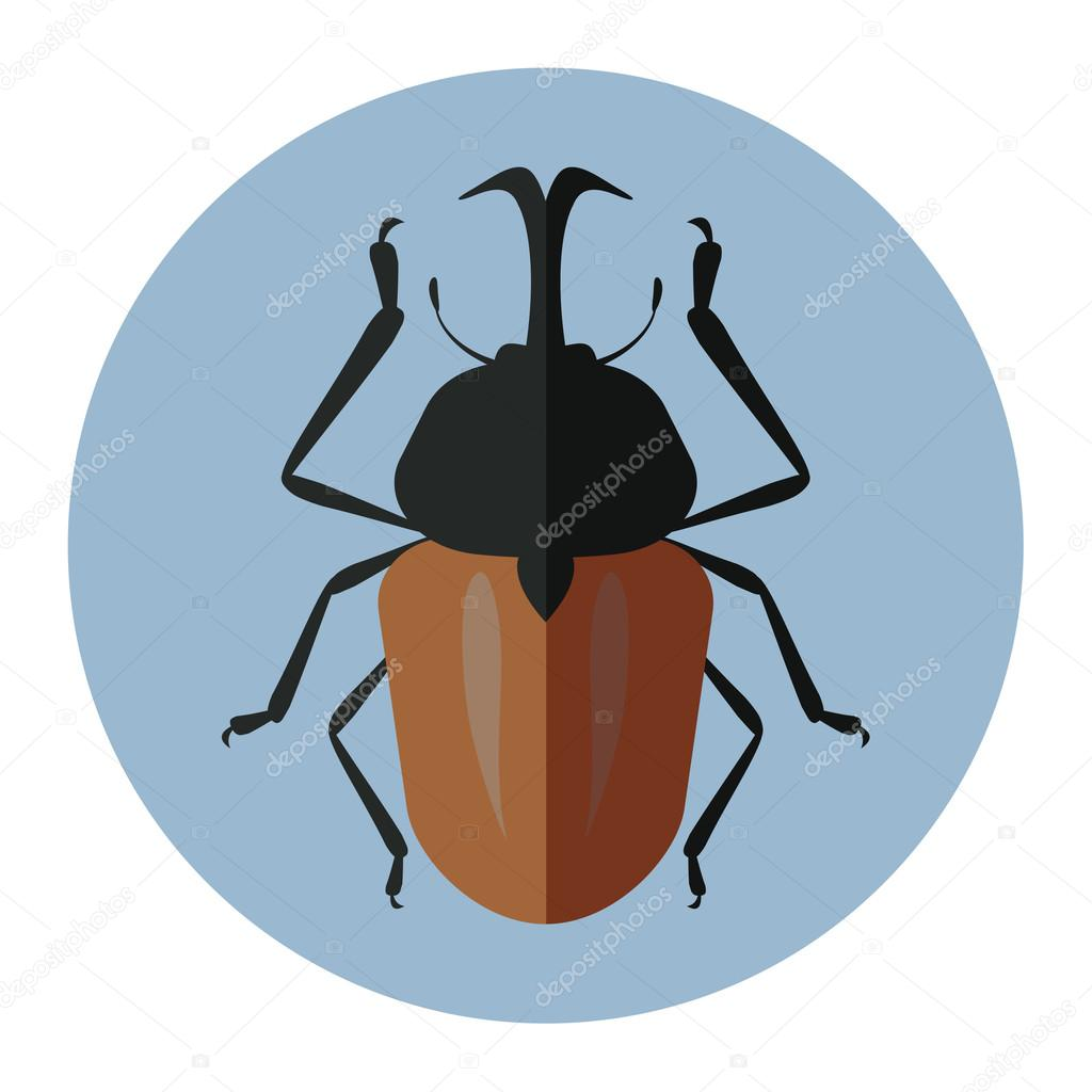 color insects flat icon — Stock Vector © HedgehogVector #116861448
