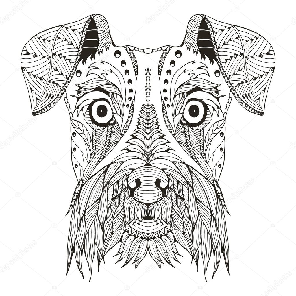 Schnauzer dog head zentangle stylized, vector, illustration, freehand pencil, hand drawn, pattern. Zen art. Ornate vector. Lace. Print for t-shirt.