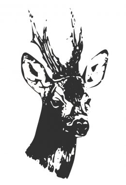 Hand drawn black and white buck silhouette, vector, illustration.
