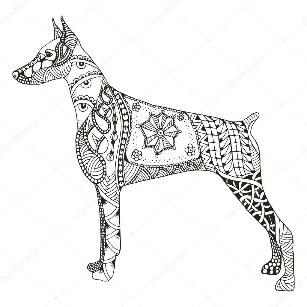 doberman pinscher zentangle stylized vector illustration free stock vector 107143410