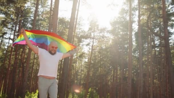 Happy queer man waving rainbow gay flag on sun flare light in beautiful summer day. Happy guy wearing heart sunglasses demonstrate his rights. LGBTQI, Pride Event, LGBT Pride Month, Gay Pride Symbol
