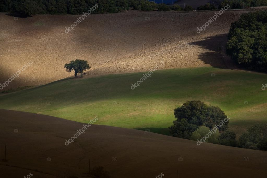 Italy, Tuscany, Pisa, Casglia (Montecatini Val di Cecina)