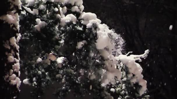 Hó hullik a fenyőágakról éjjel.