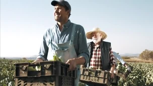 Farmers carrying and loading baskets