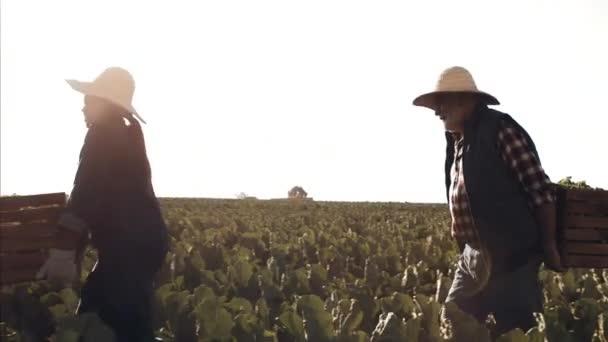Zemědělci nesli košíky plné produktů