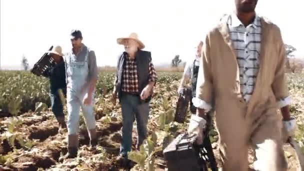 Mnohonárodnostní pracovníků v oblasti zemědělství