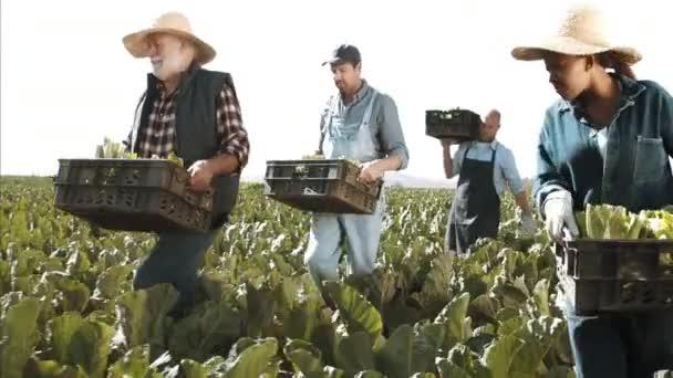 Farmers carrying loaded baskets
