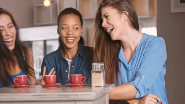 girls chatting and laughing together in a cafe