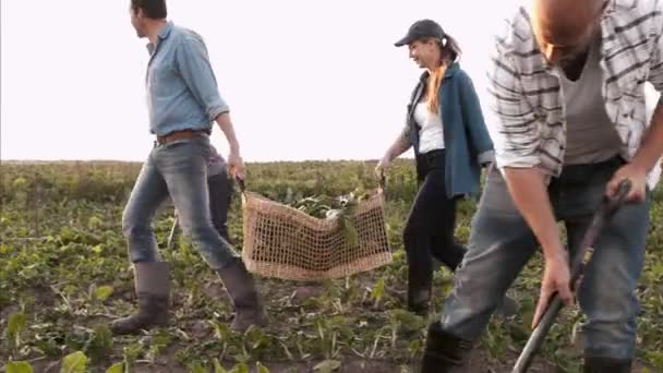 Couple farmers carrying and loading baskets