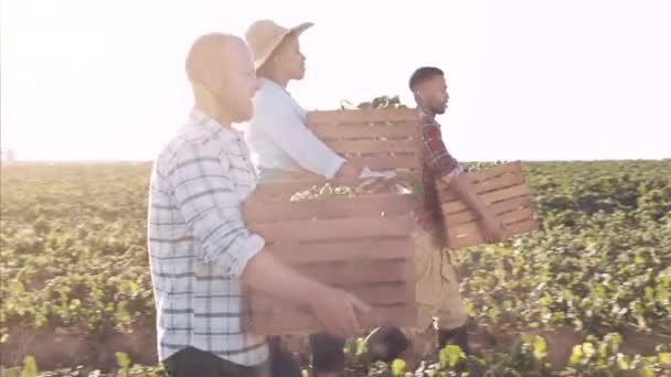 Farmers and workers carrying baskets