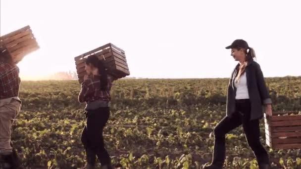 Happy couple farmers