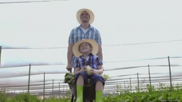 Farming Father Pushing Son In Wheelbarrow
