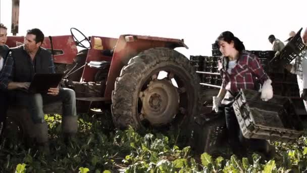 Zemědělství pár kontrola na postup výroby