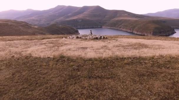 autentické africké herder a stádo