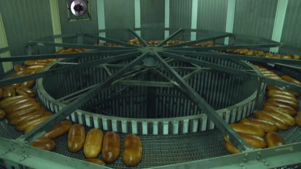 čerstvě upečený bochníků chleba