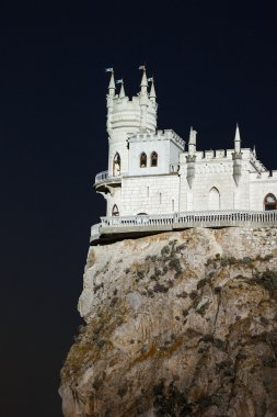 view of the swallow's nest at night