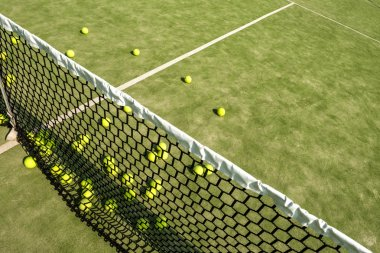 Tennis balls on the court.