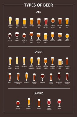 A visual guide to the types of beer. Various types of beer in recommended glasses. Vector illustration