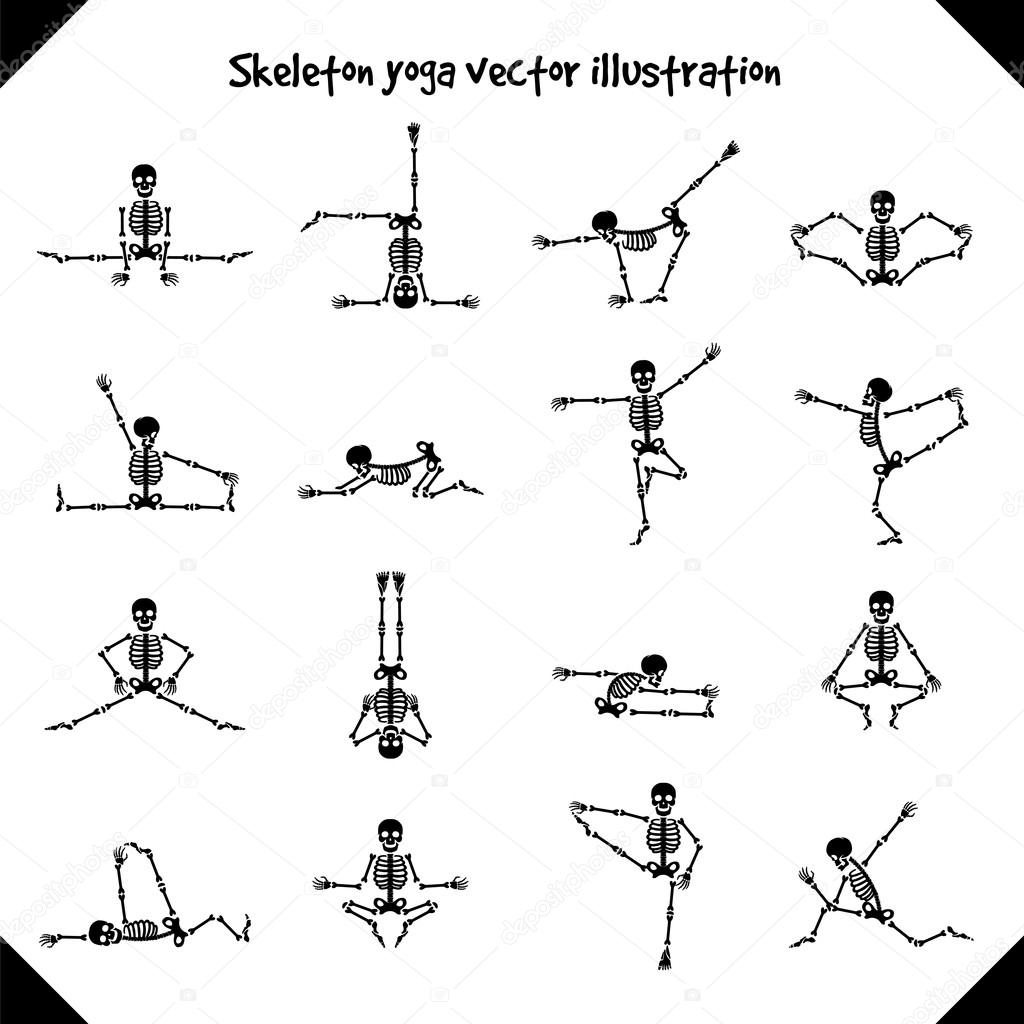 Skeletons in yoga poses