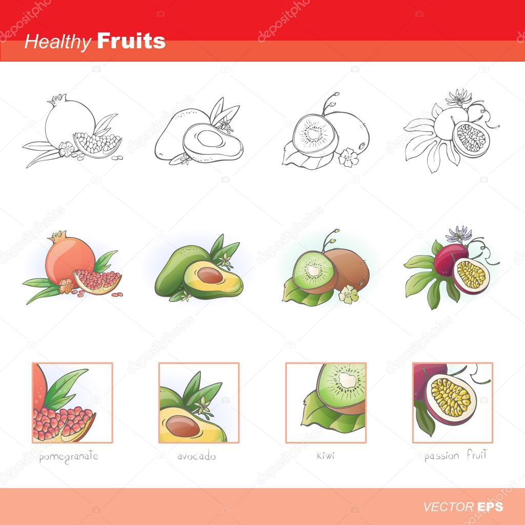 Healthy fruits icons. vector illustration clipart vector