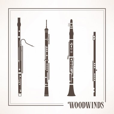 Woodwinds classical instruments
