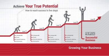 Financial evolution infographics