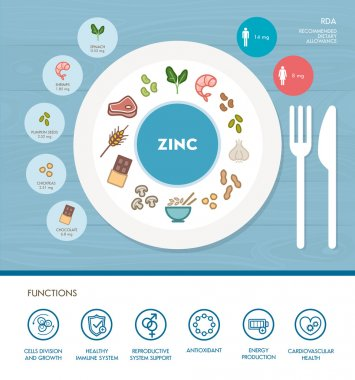 Zinc mineral nutrition infographic