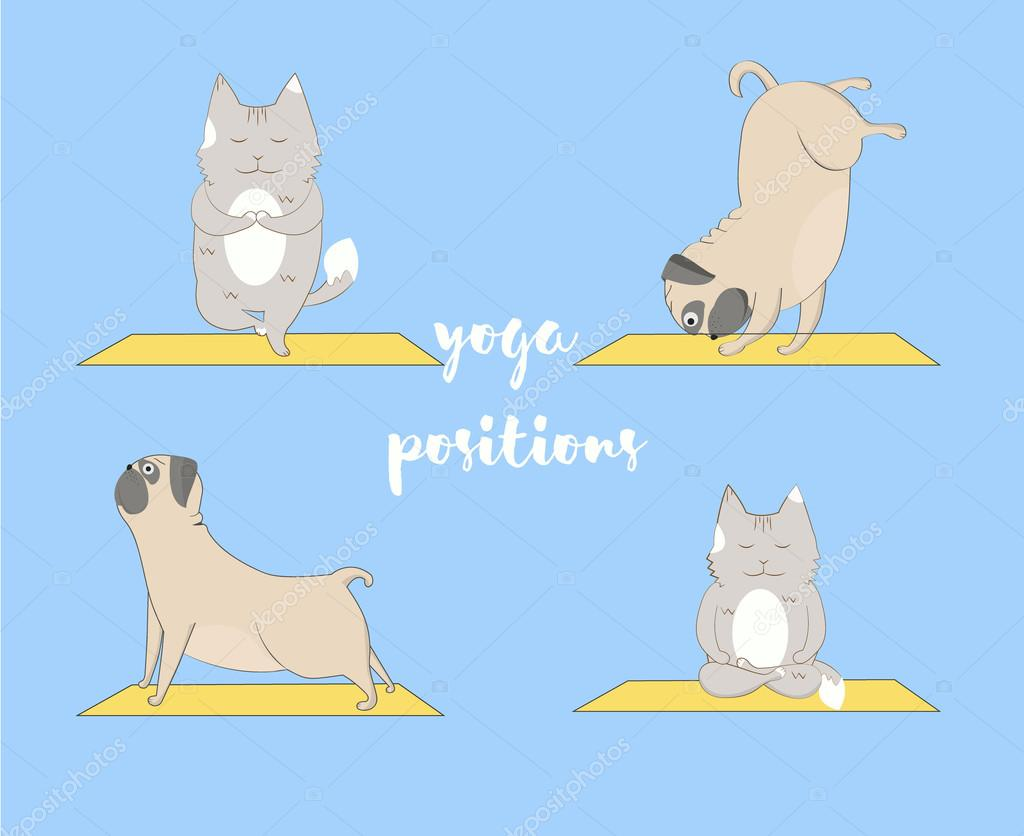 Yoga pugs and cats set. Cute pugs and cats doing yoga