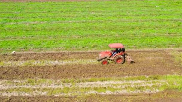 A mezőgazdasági termelő egy traktort használ, hogy előkészítse a talajt a rizstermesztésre..